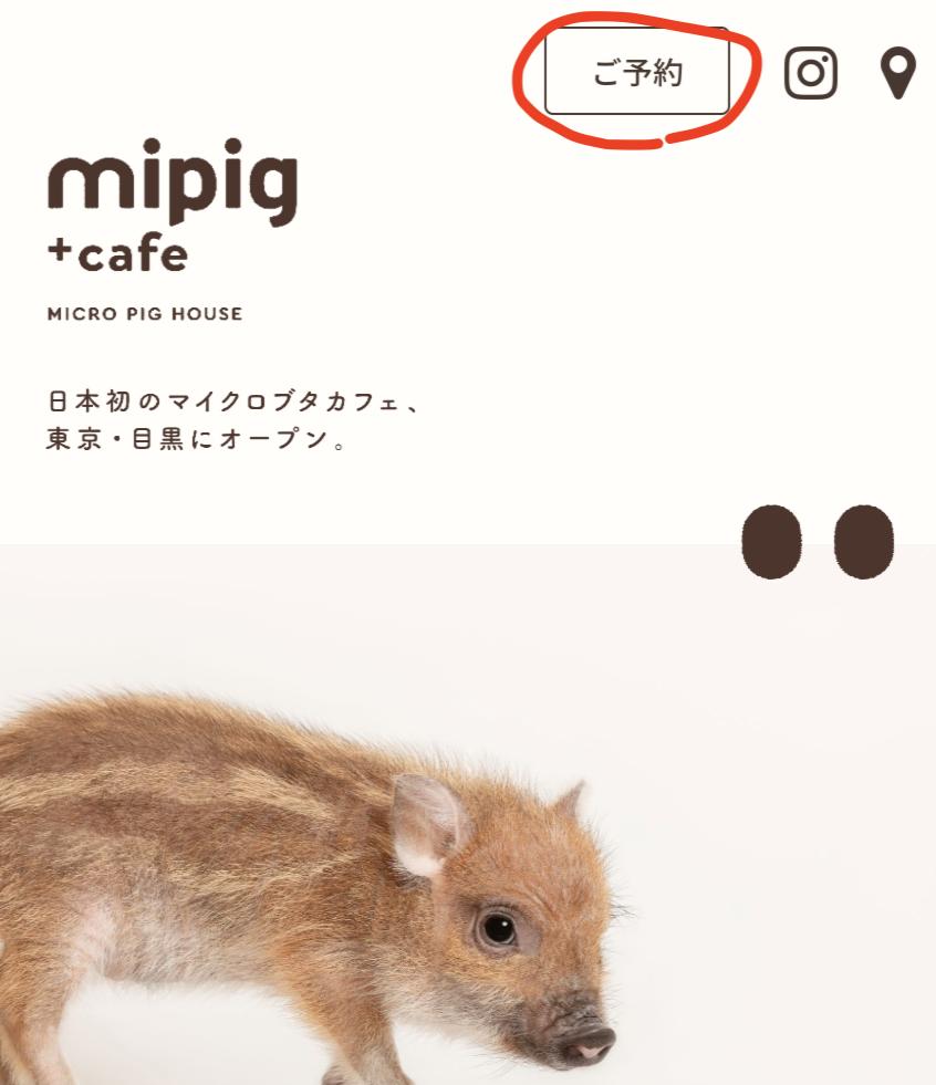 マイピッグカフェの予約の取り方手順①