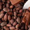 チョコレートデザイン公式サイト |